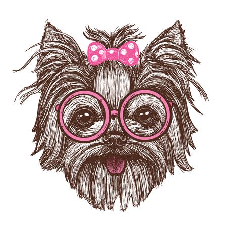 眼鏡の面白いファッショナブルなヨークシャーテリア犬の女の子を描いた手のベクトルイラスト-ストックベクトル  イラスト・ベクター素材