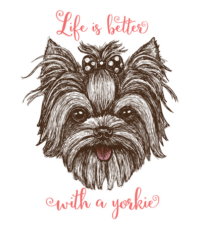 Vector illustration of a hand drawn funny fashionable Yorkshire terrier dog - stock vector