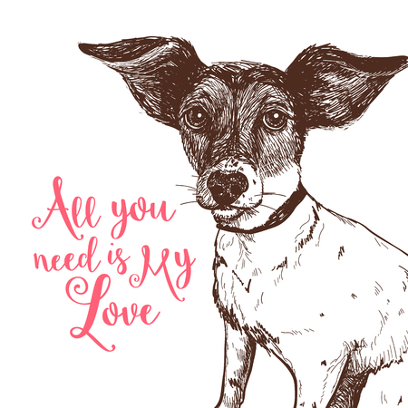 Vector illustration of a hand drawn jack russell terrier dog Banco de Imagens - 94540382