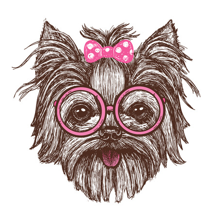 Vector illustration of a hand drawn funny fashionable Yorkshire terrier dog girl in glasses - stock vector