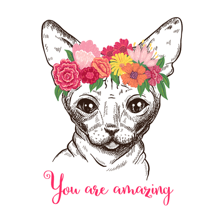 Hand drawn illustration of a fashionable sphynx cat in a floral wreath. Illustration