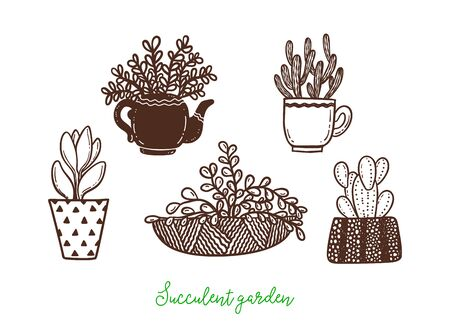 Set of different hand drawn cactus and succulents in flower pots.Vector illustration.