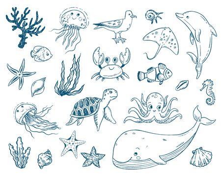 Vector doodle illustration set sea creatures and plants. Ocean, jellyfish, octopus, sea horse, seaweed, molluscs. Undersea world.