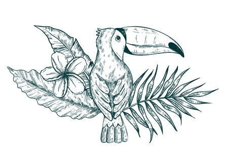 Hand drawn toucan sitting on branches and leaves of tropical plants.