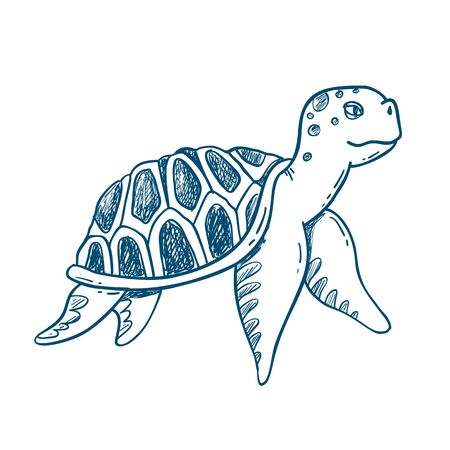 Sea Turtle Vector Illustration, Turtle Vector Sketch, Hand Drawn Sketch of Turtle, Isolated Turtle