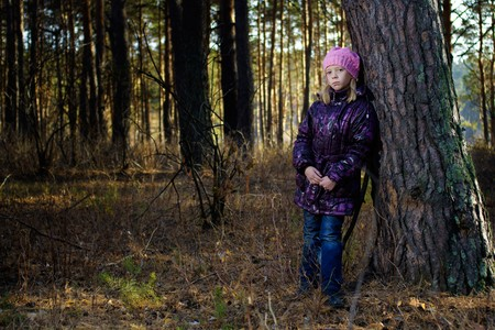 leant: The girl in an autumn pine wood has leant against a tree