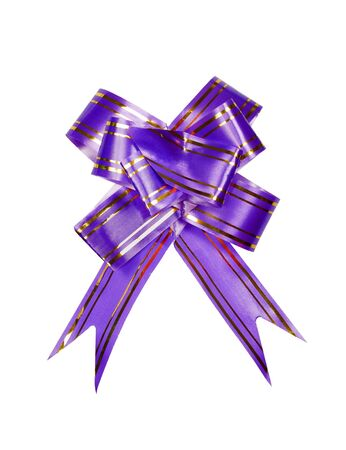 Decorative dark blue paper bow on a white background