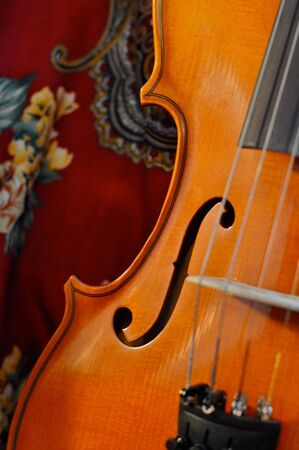 wooden violin in satin fabric  photo