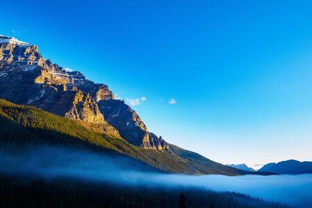 treeline: early morning at Moraine Lake Shoreline  Rock Pile, Banff National Park, Canada Stock Photo