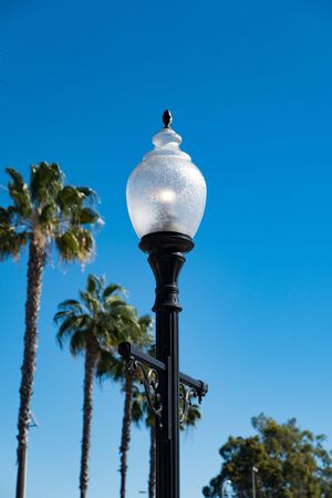 electric street light pole with palm tree Banco de Imagens