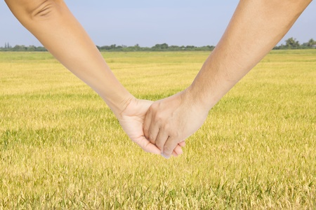 Successful farmers hold their hands and look at their rice field photo
