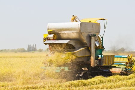 Rice harvesting with combine harvester, Thailand Stock Photo