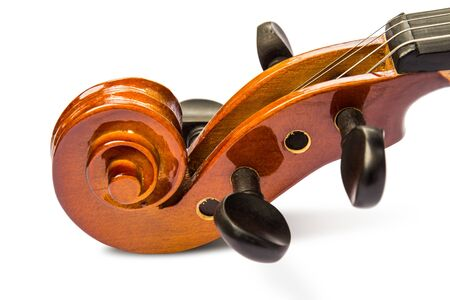 Close up of scroll and pegbox of violin, on white background with shadow Stock Photo - 14976870