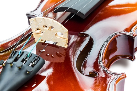 Close up of violin on white background with shadow, focusing on bridge and f-hole Stock Photo - 14976872