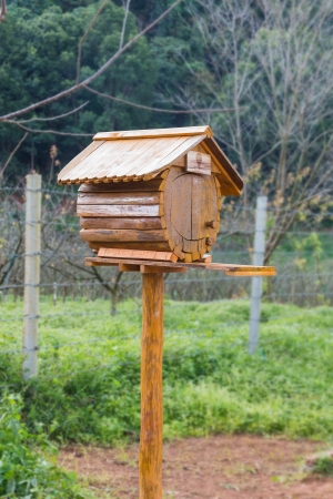 Birdhouse or homemade wooden mailbox photo