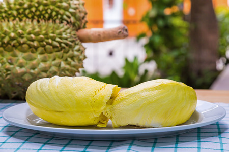 formidable: Close up of Mon Thong code name D159 or Golden Pillow durian