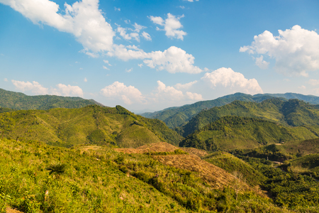 decimated: Decimated deforestation area on some mountains in Laos Stock Photo