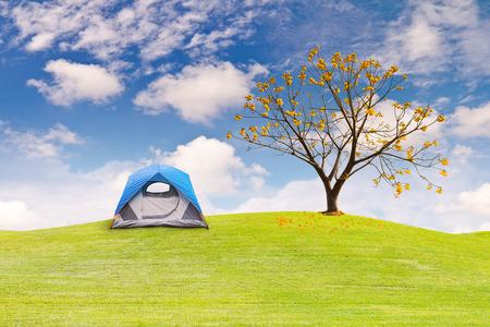 flower fields: Dome tent camping on green grass field