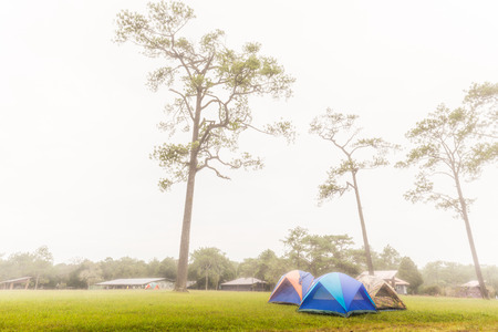 hospedaje: LOEI, THAILAND - 03 OCTOBER 2015 - Morning scene of tents camping area and lodging houses in the mist on Phu Kradueng National Park, Loei province, Thailand.