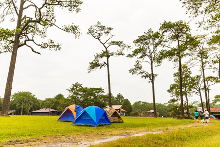 hospedaje: LOEI, THAILAND - 03 OCTOBER 2015 - Morning scene of tents camping area and lodging houses on Phu Kradueng National Park, Loei province, Thailand. Editorial