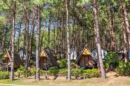 hospedaje: casas de alojamiento para los turistas entre los árboles de pino en el embalse de Pang Pang Ung Tong, provincia de Mae Hong Son, Tailandia Foto de archivo