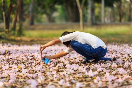 nakhon pathom: NAKHON PATHOM, THAILAND - 24 FEBRUARY 2016 - Unidentified woman uses her mobile phone to take picture of her kid and fallen Pink Trumpet flowers on the ground at Kamphaeng Saen, Nakhon Pathom province, Thailand.