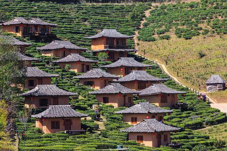 hospedaje: casas de alojamiento entre la plantación de té en la ladera de una colina en Ban Rak Thai (Thai pueblo amante), la provincia de Mae Hong Son, Tailandia Foto de archivo