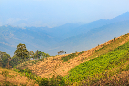 Terrain of highland and mountain in the north of Thailand, some are decimated deforestation mountain
