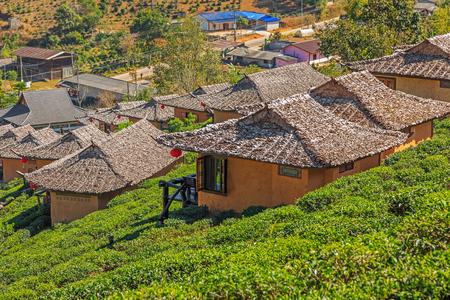 Small cob houses among the tea plantation on the hill slope at Ban Rak Thai (Thai loving village), Mae Hong Son province, Thailand