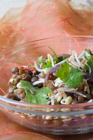 Closeup of an Oriental lentil salad. Stock Photo - 6049325