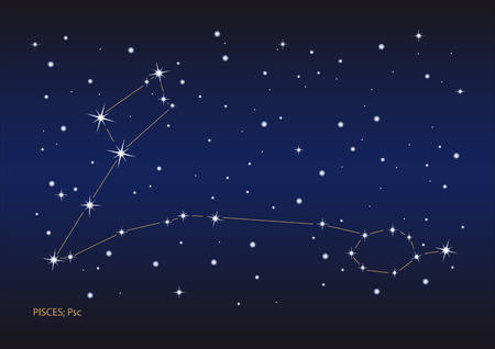 Illustration showing the pisces constellation Vector