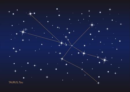 Illustration showing the taurus constellation Vector