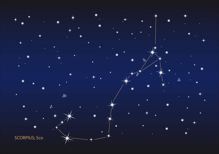 Illustration showing the scorpius constellation Stock Vector - 6506426