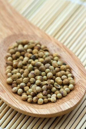 spicery: Close-up image of the spicery coriander placed in a wooden spoon. Stock Photo