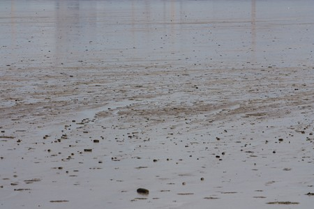 falling tide: Full frame image of the mud flat which is for example suitable as background.