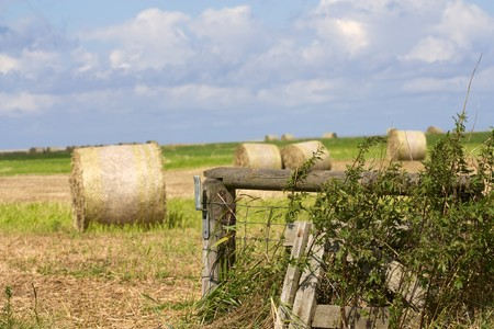 Landscape of a field with bales of straw and blue sky im Sommer.