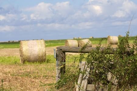 Landschap van een veld met Balen stro en blauwe hemel im Sommer.