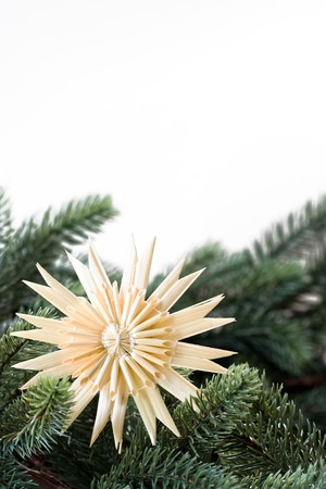boughs: Image of a straw star with fir boughs and copy space Stock Photo