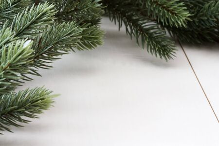 boughs: Close-up image of fir boughs with copy space