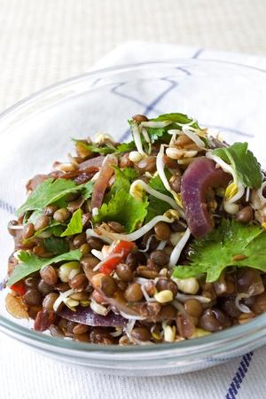 Selectieve aandacht afbeelding van een Aziatische linzen salade. Stockfoto