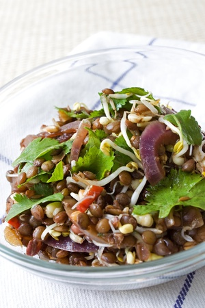 Selective focus image of an Asian Lentil salad.