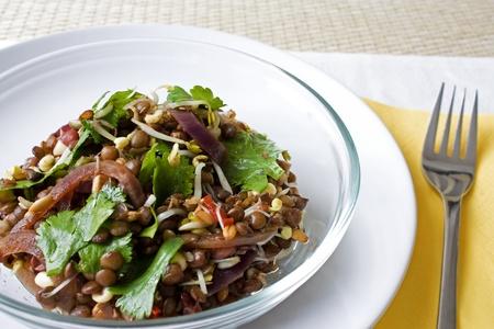 Selective focus image of an Asian Lentil salad.