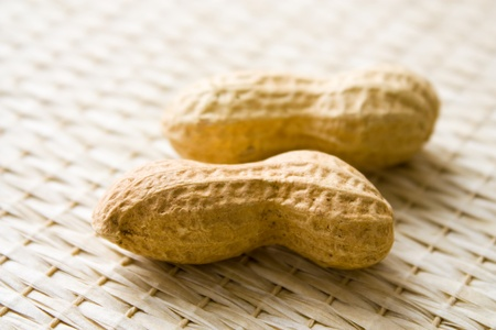 Selective focus image of two peanuts with copy space. photo