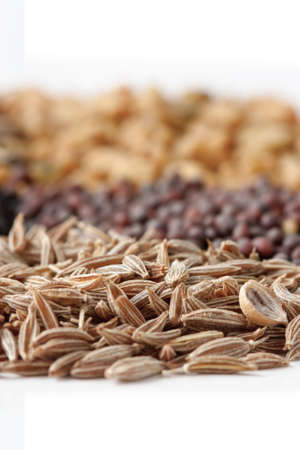 flavoursome: Selective focus image of cumin seed and other spices with white background.