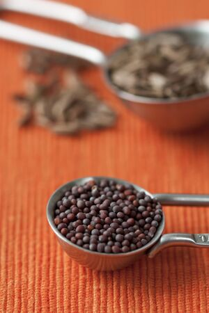 mustard seed: Close up image of measuring spoons with mustard seed and orange background.