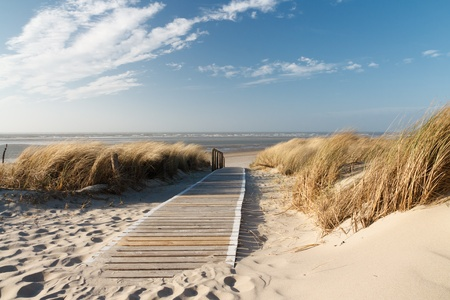 the north sea: Path to the beach on Langeoog through the dunes with the North Sea in the background
