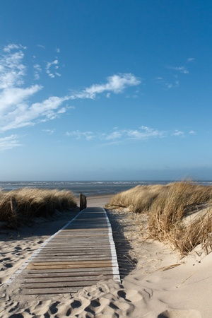 Path to the beach on Langeoog through the dunes with the North Sea in the background