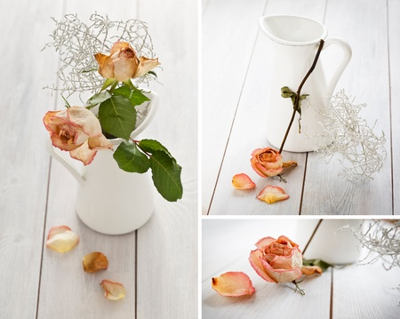 Set of images with dried roses and a jar on a white wooden background. photo