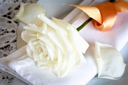 doiley: Close up image of a napkin with a white rose blossom.