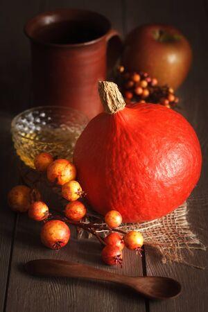 cucurbita: Autumn still with pumpkin, apple and other decoration.